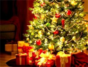 Компания StasyDubois поздравляет всех с наступающим 2013 годом!
